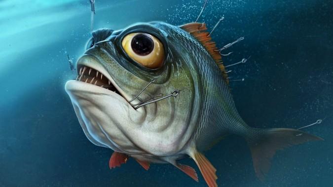 Free Fish Wallpaper Fish Wallpaper Download Wallpaperuse 1